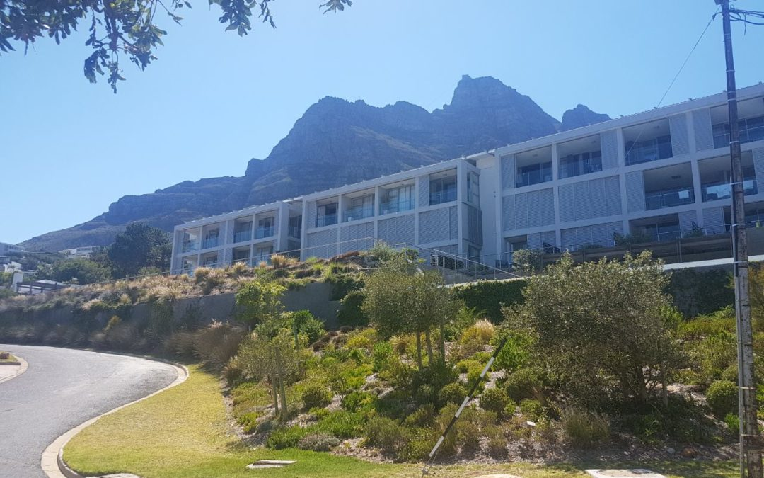 Beautiful Indigenous Gardens in Camps Bay